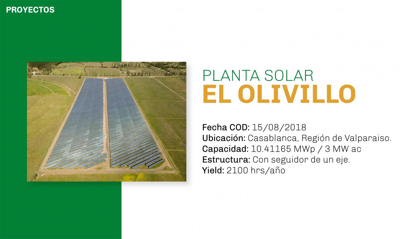 EL OLIVILLO-04-04